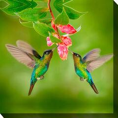 Hummingbird #8 Wall Art,