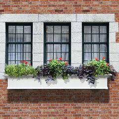 Mayne® Yorkshire 6' Window Box,