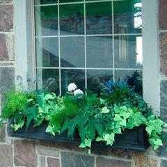 Mayne® Fairfield 5' Window Box,