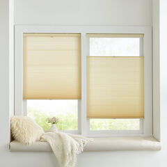 Cordless Top Down Cellular Honeycomb Shade, ALABASTER