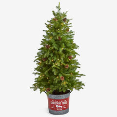 "54"" Pre-Lit Tree in Metal Bucket, GREEN"