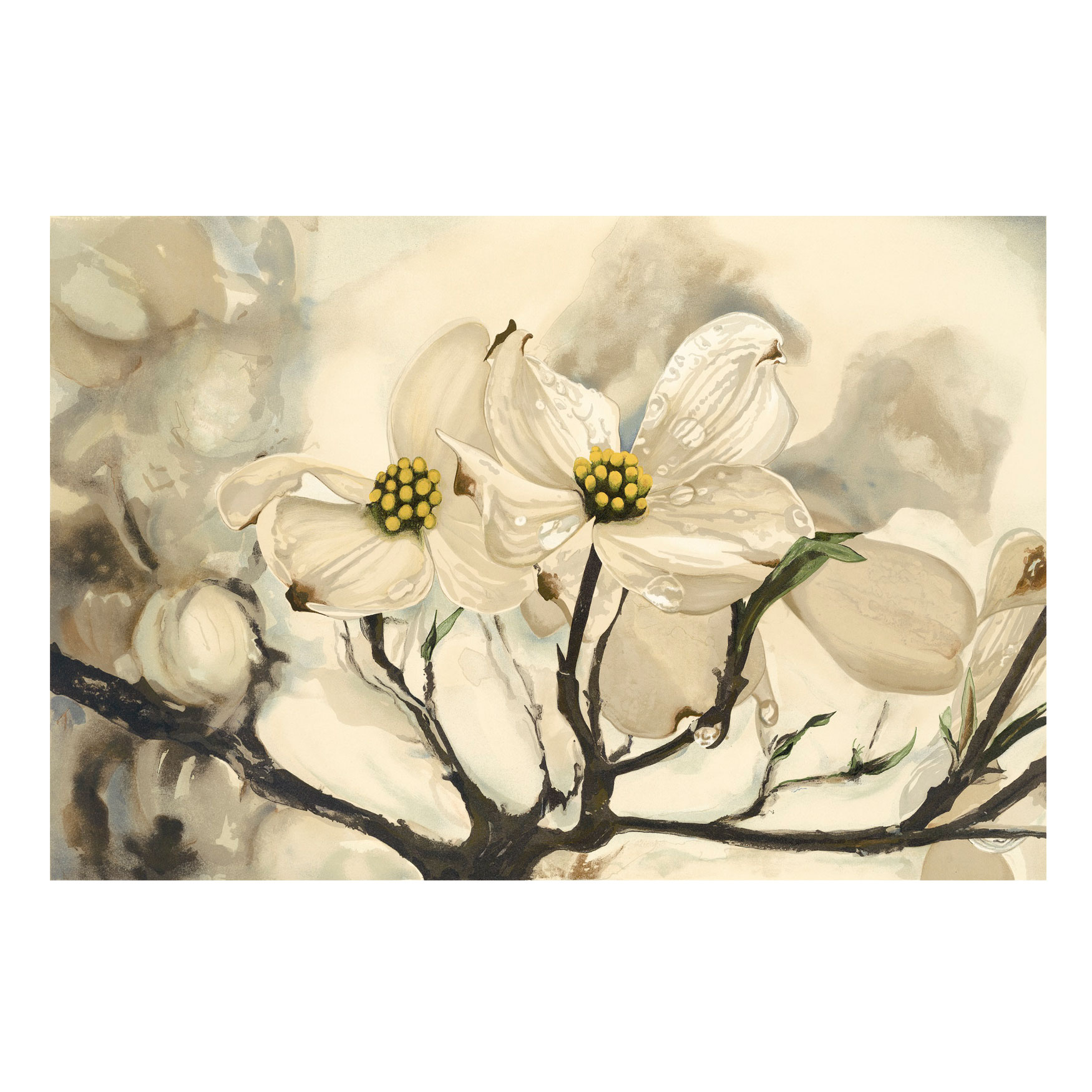 Dogwood Watercolor Outdoor Canvas Art, MULTI