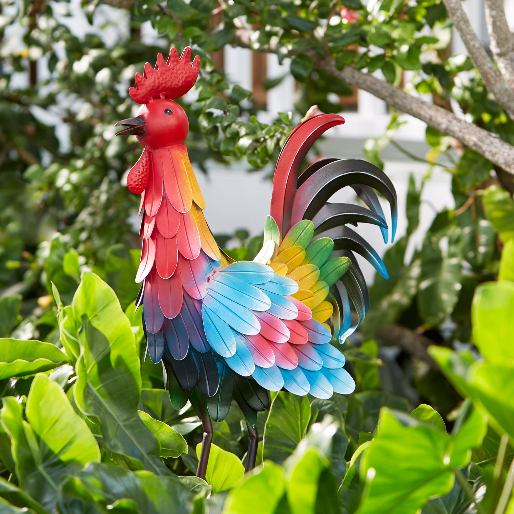 Metal Rooster, MULTI